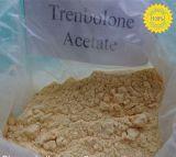 Acetato steroide giallo scuro di Trenbolone della polvere (Finaplix H/Revalor-H) per guadagno grasso di Musle di perdita