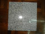 602 de Tegels van het graniet voor het Behandelen van de Vloer van de Muur