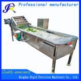 다기능 자동적인 과일 청소 기계 야채 세탁기