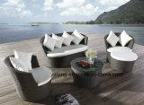 Il sofà esterno del giardino della mobilia di svago comodo ha impostato con la sede di Single&Double (YT459)