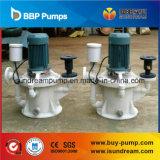 Vertikale selbstansaugende Pumpe vom Berufshersteller