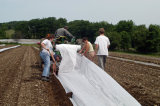 プラント霜保護毛布の庭ファブリック
