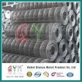 La rete metallica del ferro dell'acciaio inossidabile/ha galvanizzato la costruzione saldata della rete metallica