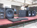 2 van de manier Dubbele 8 van de Duim Professional/PRO- Audio (Slimme 8)