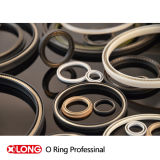 PTFE Spring Energized Seal per -196 Working Circostanza