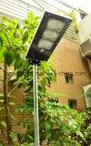 9W alle in einem Solarstraßenlaterne-Garten-Licht