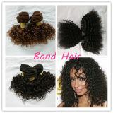 A extensão Kinky de trama do cabelo Curly de cabelo humano/cabelo tece