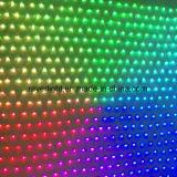 Mehrfarben-LED-Weihnachtslichter zeigten esteuerte LED-Nettolichter für Beleuchtung-Dekoration