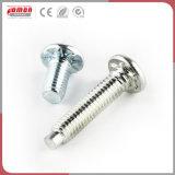 Les accessoires personnalisés vis de fixation en acier inoxydable de métal