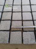 Granito grigio scuro fiammeggiato ingranato pavimentando Cobblestone