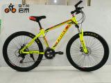 Bicicleta de aço da montanha com a engrenagem MTB de 21 velocidades de China