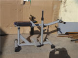 Máquina asentada equipo comercial Xr39 del aumento del becerro de la gimnasia