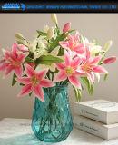 Schönheits-Ananas farbiger Glasvase für Dekoration