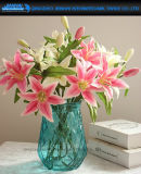 Nuevos floreros de cristal de la decoración del hogar del florero de los floreros