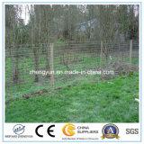 Elektrischer Draht-Bauernhof-Zaun für Vieh/Schafe Wholesale