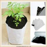 Poli sacchetto scaricato nero biodegradabile e concimabile del semenzale dell'albero della pianta