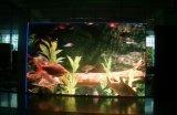 P10346 DIP Outdoor plein écran LED de couleur