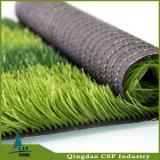 チンタオCspから成っている小型フットボール競技場の人工的な草