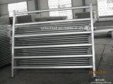 Горячая окунутая гальванизированная стальная загородка фермы лошади