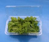 ペットプラスチック果物と野菜の包装の容器はOEM 750グラムの受け入れる