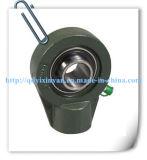 China Bearing Factory Supply UC, SA, Sb, UK Roulements à billes, unités de roulement, blocs à oreiller