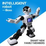 2016 Rk01 de Intelligente Robot van het Onderwijs van de Robot van de Robot Chef- Waterdichte Vroege