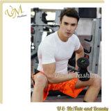 Le Mens sec d'ajustement de forme physique de gymnastique folâtre le T-shirt pour les hommes