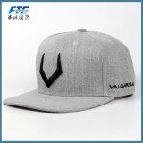 3D刺繍のロゴの昇進のフラットキャップの野球帽