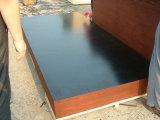 la película de la talla 1250X2500 hizo frente a la madera contrachapada y a la madera contrachapada Shuttering. Madera contrachapada marina