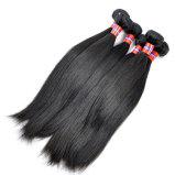 Pleines perruques de lacet de cheveux malaisiens de Vierge (courbure 26Inch-Jerry)