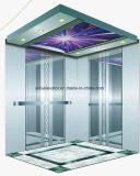 FUJI Yida 최대 대중적인 전송자 엘리베이터