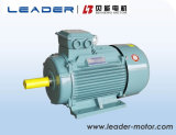 Le3 (YE2) Series (GB3 IE2) Motor elétrico elétrico de indução de alta eficiência