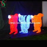 3D 주제 아크릴 다람쥐 빛