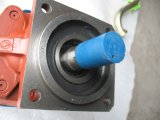 Marca cinese pompa Cbgj2040 /2040-Z2 di /Gear della pompa idraulica delle parti del caricatore della rotella 3t e 5t di Sdlg