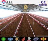 Las aves de corral contienen/hogar del pollo con el equipo de las aves de corral (PCH-14324)