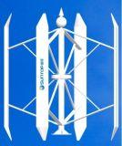 Hauptwind-Generatoren (SUNTOP-WG-3KW-H)