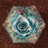 Vierkante Doos van de Doos van de Bloem van de Gift van de Dag van de valentijnskaart de Acryl