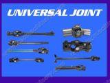 Junta universal