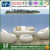 Résistance aux UV de mobilier de jardin en rotin 4PCS Selectional canapé Set (TG-1238)