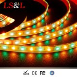 DC12V IP68는 LED 밧줄 지구 빛 제조자를 바꾸는 RGBW+Wihte 색깔을 방수 처리한다