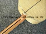 Sj200 стороны Tiger акустическая гитара с 301 Fishman (SJ200)