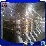 Camera galvanizzata prefabbricata della struttura d'acciaio del pollo del pollame