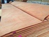 Folheado de madeira natural de Okoume do folheado para a face da madeira compensada