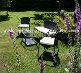 Het dineren de Geplaatste Eettafel van de Reeks/Rotan/Stoel/Bistro/het Meubilair van de Tuin van de Rotan
