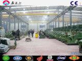 La estructura de acero de bajo coste Wide-Span taller en Argentina