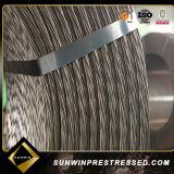 Sunwin Facotry Comercio al por mayor de hormigón pretensado 7 hilos alambre