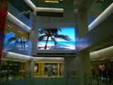 Vidéo polychrome d'intérieur Wall/LED de P10 DEL annonçant l'étalage