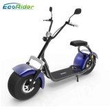 2017 en dos ruedas Citycoco neumático Fat Harley Scooter eléctrico con batería extraíble