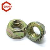 L'acier galvanisé DIN6923 écrou à bride hexagonal avec filetage Serration-Coarse