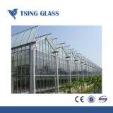 O vidro temperado com logótipo/furos/bordas polidas de 3-19mm
